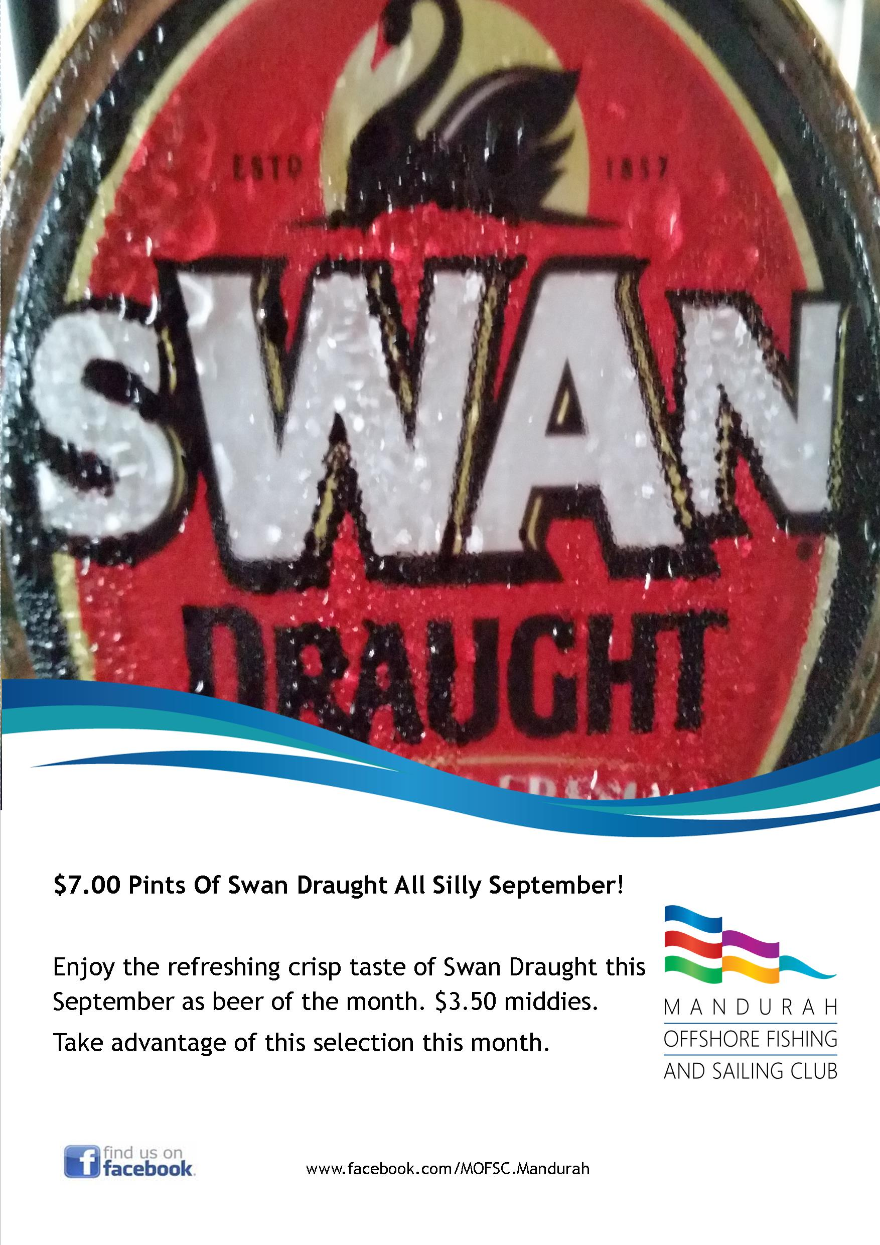 Swan Draught Silly September